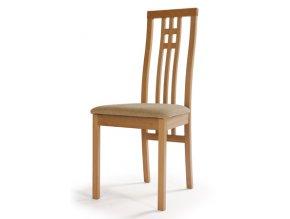 Jídelní židle AQ-O568